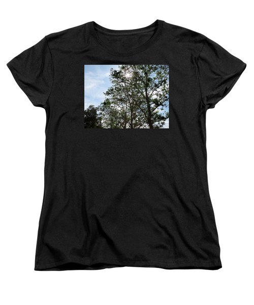 Trees At The Park Women's T-Shirt (Standard Cut) by Laurel Powell