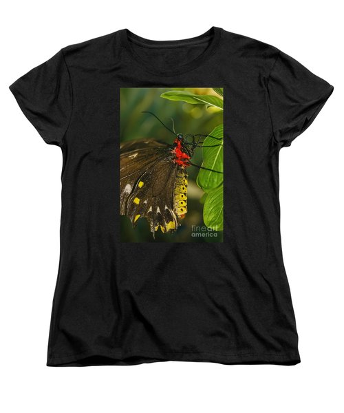 Women's T-Shirt (Standard Cut) featuring the photograph Troides Helena Butterfly  by Olga Hamilton