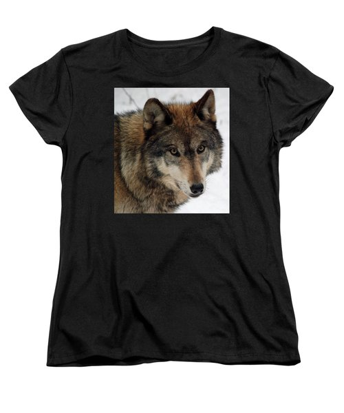 Women's T-Shirt (Standard Cut) featuring the photograph Trusting by Richard Bryce and Family