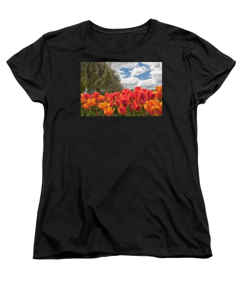 Tulips Women's T-Shirt (Standard Cut) by Brian Caldwell