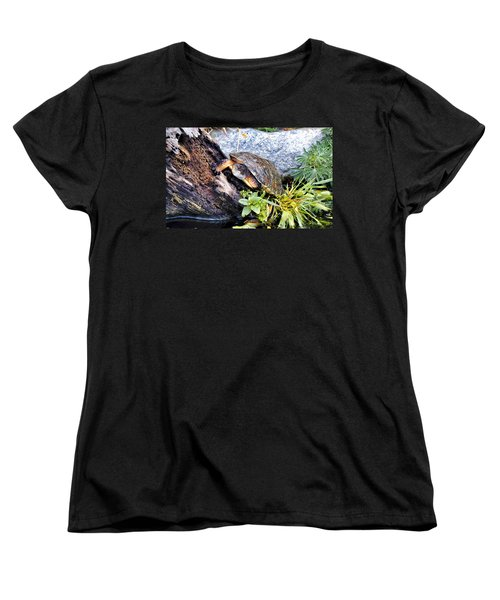 Women's T-Shirt (Standard Cut) featuring the photograph Turtle 1 by Dawn Eshelman