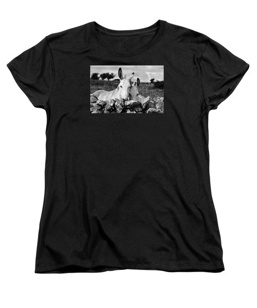 Two White Irish Donkeys Women's T-Shirt (Standard Cut) by RicardMN Photography