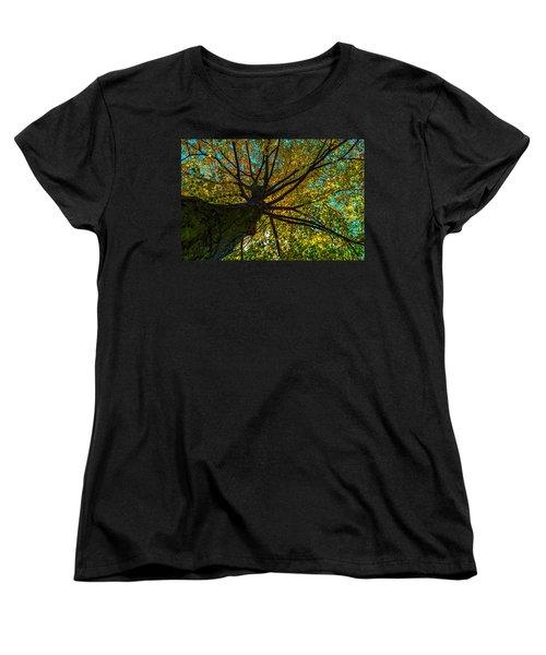 Under The Tree S Skirt Women's T-Shirt (Standard Cut) by Tgchan