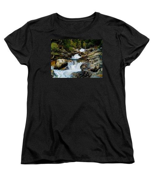 Up The Creek Women's T-Shirt (Standard Cut) by Bill Gallagher
