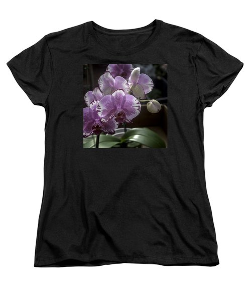 Variegated Fuscia And White Orchid Women's T-Shirt (Standard Cut) by Lynn Palmer