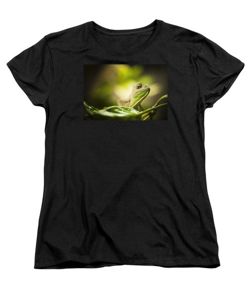 Veiled Chameleon Is Watching You Women's T-Shirt (Standard Cut) by Bradley R Youngberg