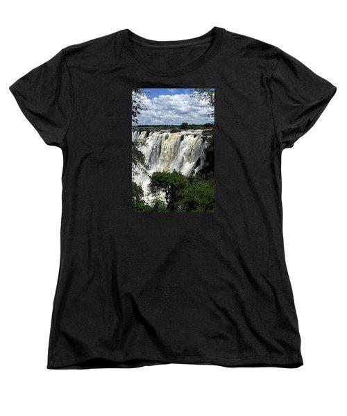 Victoria Falls On The Zambezi River Women's T-Shirt (Standard Cut) by Aidan Moran