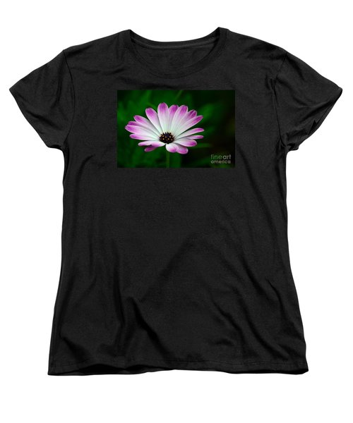 Violet And White Flower Petals With Yellow Stamens Blossoms  Women's T-Shirt (Standard Cut) by Imran Ahmed