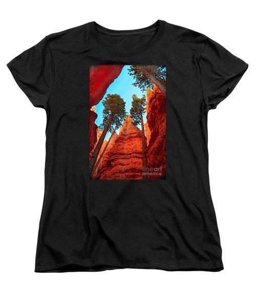Wall Street Women's T-Shirt (Standard Cut) by Robert Bales