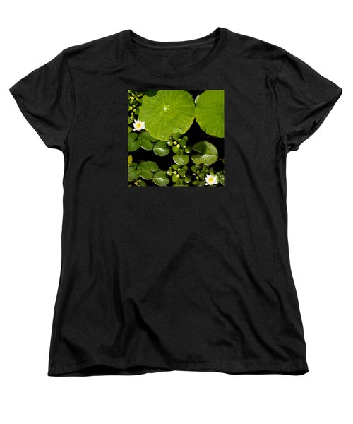 Water Drops Bristol Rhode Island Women's T-Shirt (Standard Cut) by Tom Prendergast