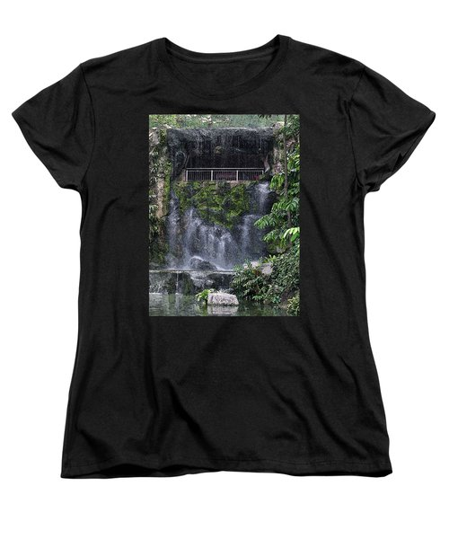 Waterfall Women's T-Shirt (Standard Cut) by Sergey Lukashin