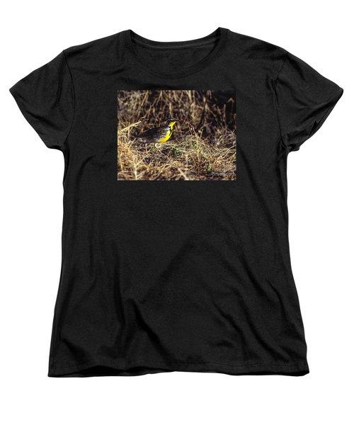 Western Meadowlark Women's T-Shirt (Standard Cut) by Steven Ralser