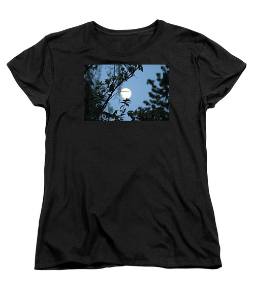 Where Are The Fairies Women's T-Shirt (Standard Cut) by Jeanette C Landstrom