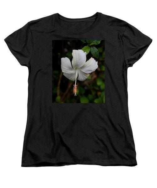 White Hibiscus Women's T-Shirt (Standard Cut) by Pamela Walton