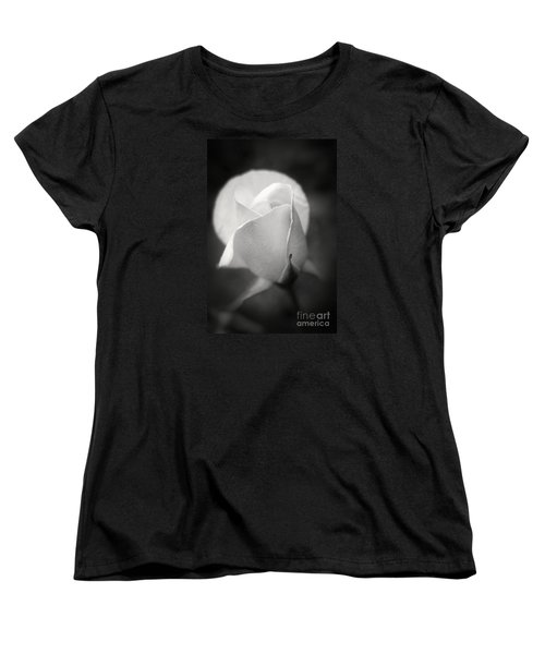 White Rose Moonlight Glow - Black And White Flower Photography Women's T-Shirt (Standard Cut)