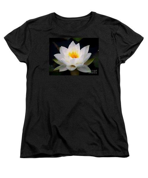 White Water Lily Women's T-Shirt (Standard Cut) by Nina Ficur Feenan