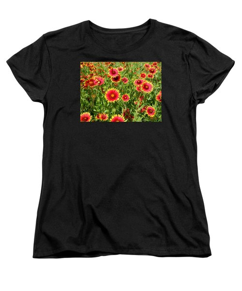 Women's T-Shirt (Standard Cut) featuring the photograph Wild Red Daisies #4 by Robert ONeil