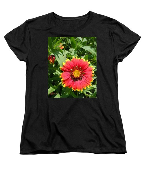 Women's T-Shirt (Standard Cut) featuring the photograph Wild Red Daisy #2 by Robert ONeil