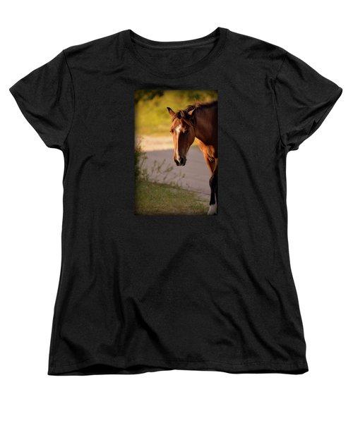 Wild Shadows Women's T-Shirt (Standard Cut) by Amanda Vouglas