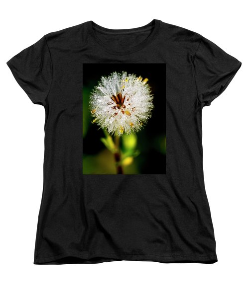 Women's T-Shirt (Standard Cut) featuring the photograph Winter Dandelion by Pedro Cardona