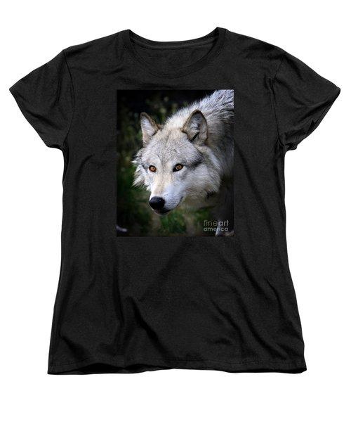 Wolf Stare Women's T-Shirt (Standard Cut) by Steve McKinzie
