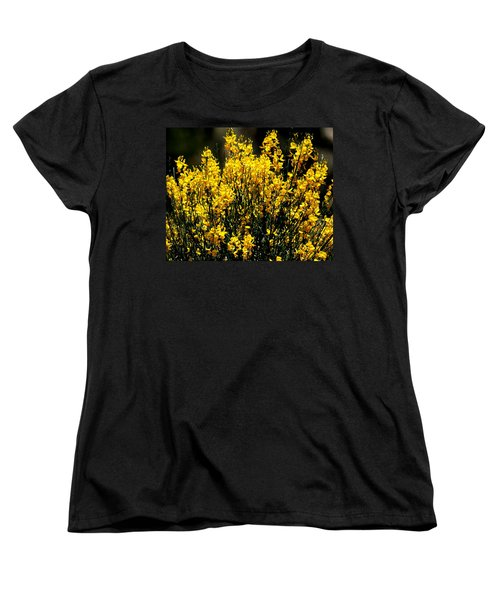 Yellow Cluster Flowers Women's T-Shirt (Standard Cut) by Matt Harang