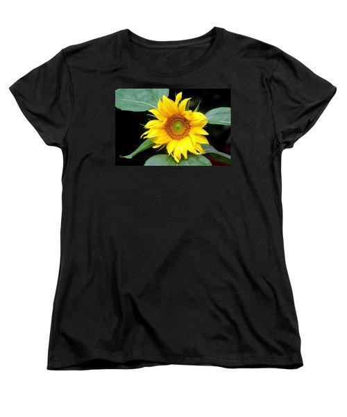 Yellow Sunflower Women's T-Shirt (Standard Cut) by Trina  Ansel