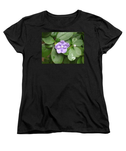 Women's T-Shirt (Standard Cut) featuring the photograph Yesterday Today Tomorrow by Lew Davis