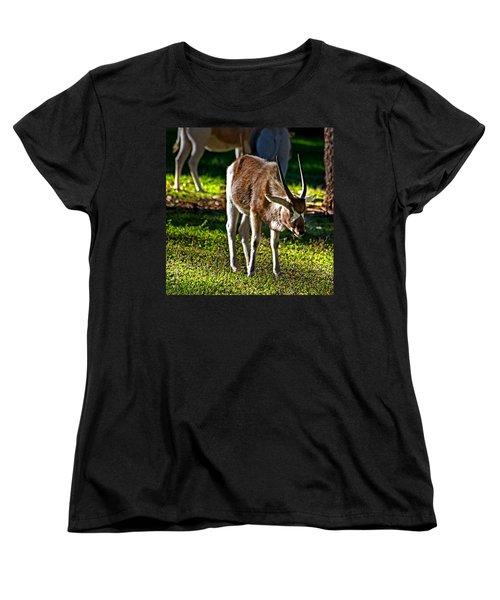 Youngster Addax Women's T-Shirt (Standard Cut) by Miroslava Jurcik