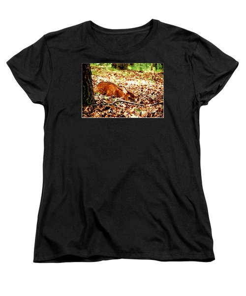 Women's T-Shirt (Standard Cut) featuring the photograph  Sweet Baby Elk by Peggy Franz
