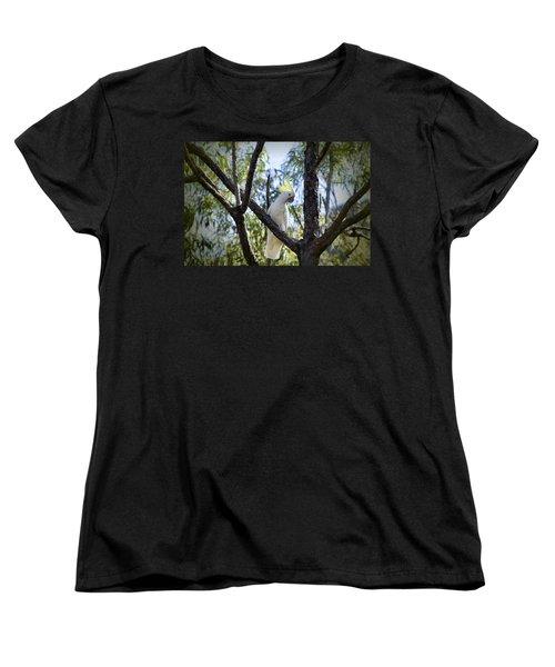 Sulphur Crested Cockatoo Women's T-Shirt (Standard Cut) by Douglas Barnard