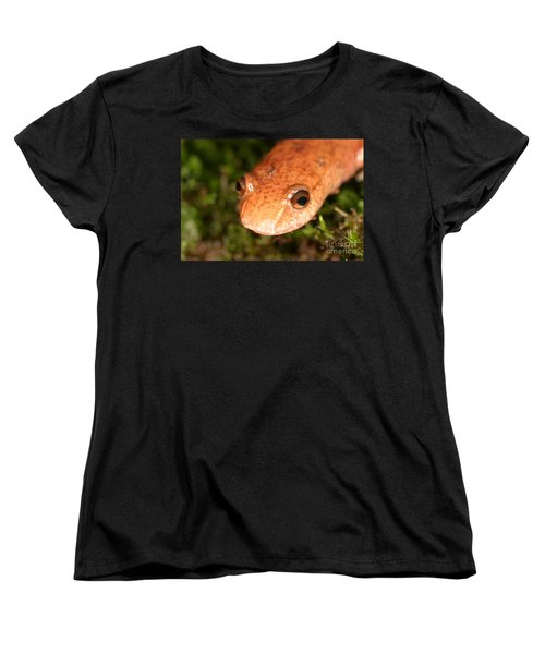 Spring Salamander Women's T-Shirt (Standard Cut) by Ted Kinsman