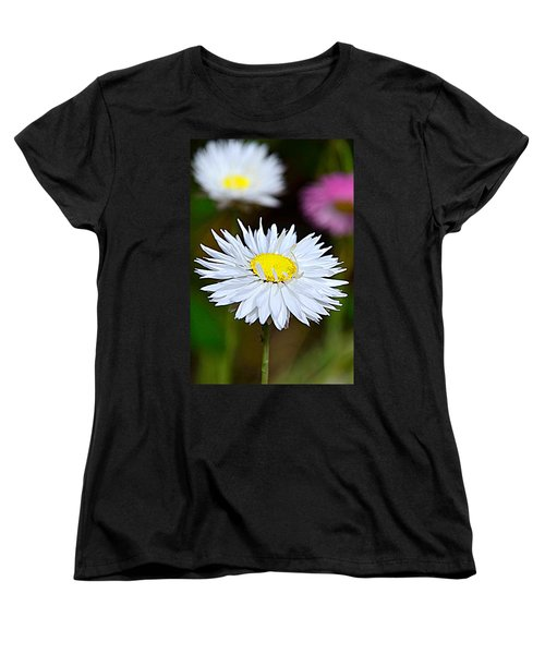 A Daisy Women's T-Shirt (Standard Cut) by Martina Fagan