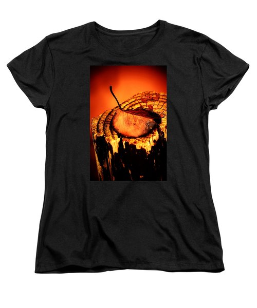 Women's T-Shirt (Standard Cut) featuring the photograph A Pose For Fall by Jessica Shelton