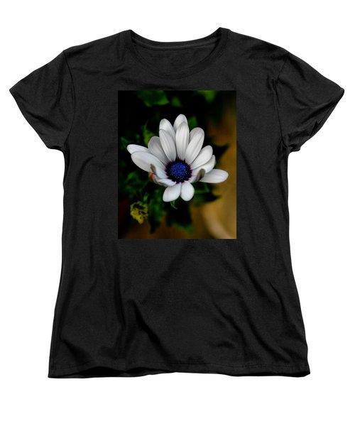 African Daisy Women's T-Shirt (Standard Cut) by Lynne Jenkins