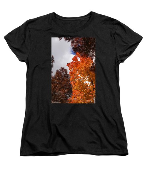 Autumn Looking Up Women's T-Shirt (Standard Cut) by Mick Anderson