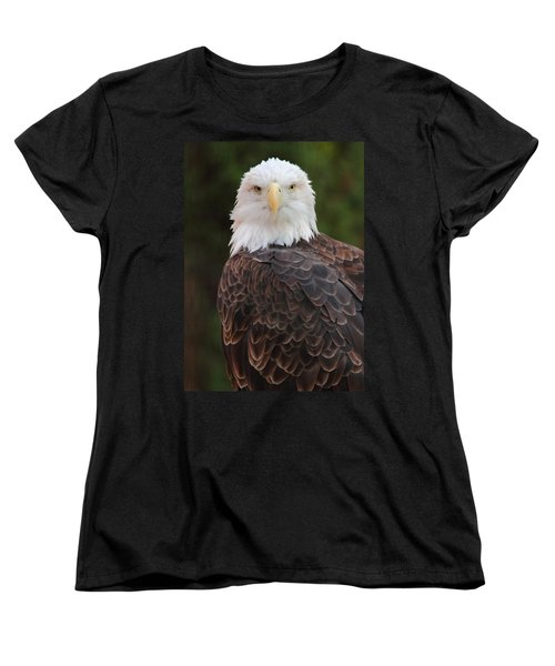 Women's T-Shirt (Standard Cut) featuring the photograph Bald Eagle by Coby Cooper