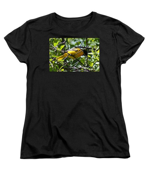 Baltimore Oriole Women's T-Shirt (Standard Cut) by Joe Faherty