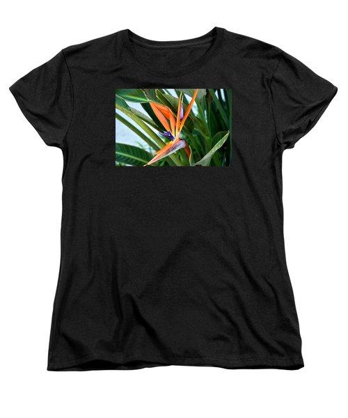 Women's T-Shirt (Standard Cut) featuring the photograph Bird by Joseph Yarbrough
