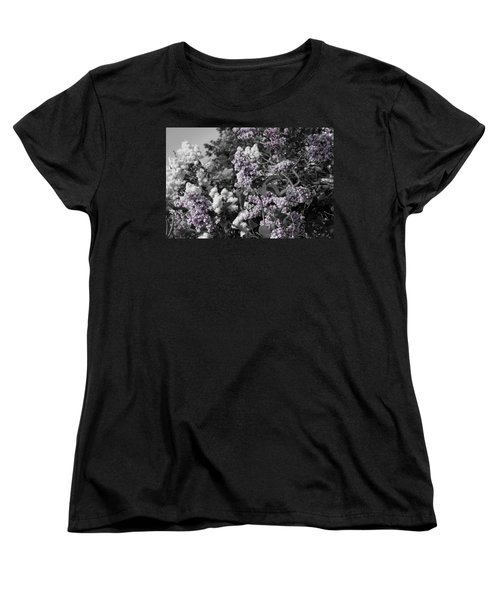 Blooms Women's T-Shirt (Standard Cut) by Colleen Coccia