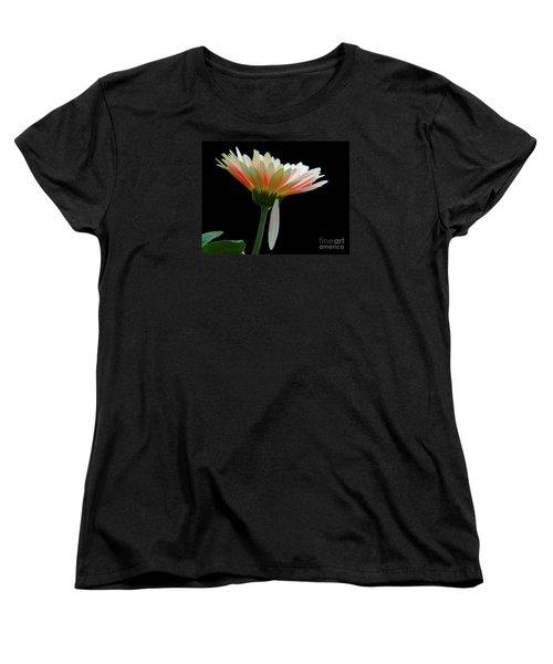 Broken Daisy Women's T-Shirt (Standard Cut) by Cindy Manero