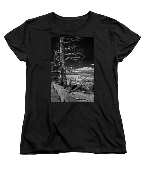 Bryce Canyon - Dead Tree Black And White Women's T-Shirt (Standard Cut) by Larry Carr