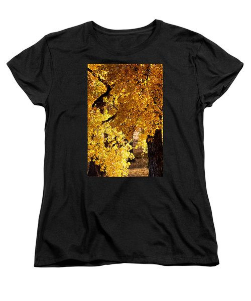 Colorado Gold Women's T-Shirt (Standard Cut) by Colleen Coccia