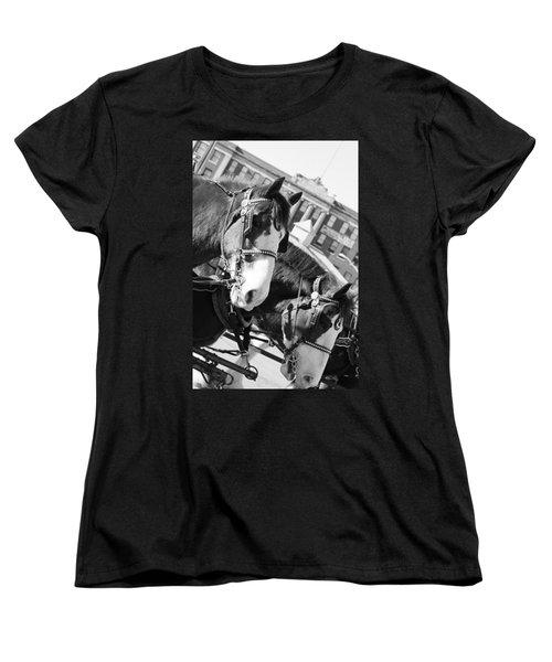 Denver Stock Show Women's T-Shirt (Standard Cut) by Colleen Coccia
