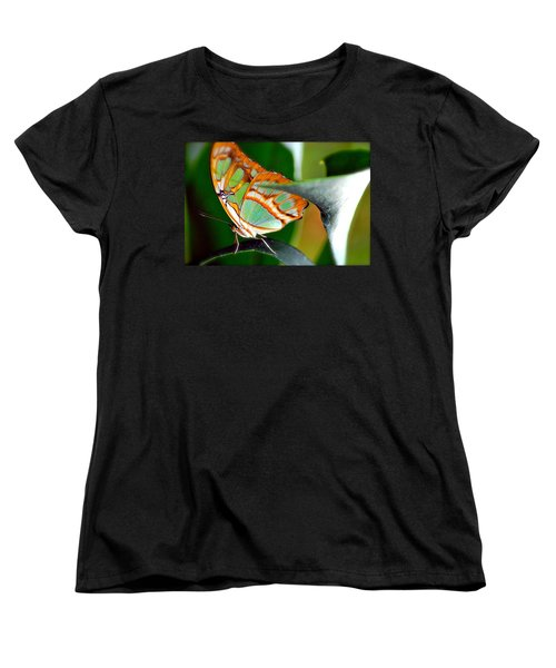 Women's T-Shirt (Standard Cut) featuring the photograph Dido Longwing Butterfly by Peggy Franz