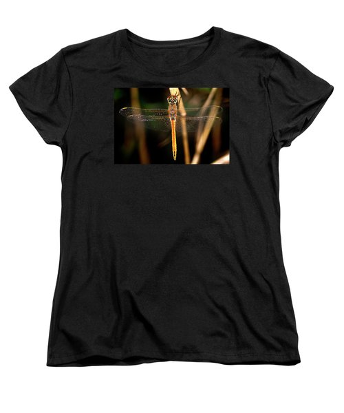 Women's T-Shirt (Standard Cut) featuring the photograph Dragon Fly 1 by Pedro Cardona