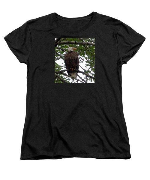 Women's T-Shirt (Standard Cut) featuring the photograph Eagle At Hog Bay Maine by Francine Frank