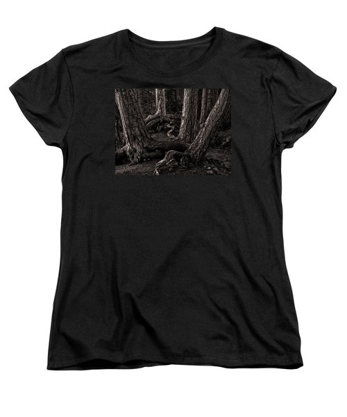 Evening Pines Women's T-Shirt (Standard Cut)