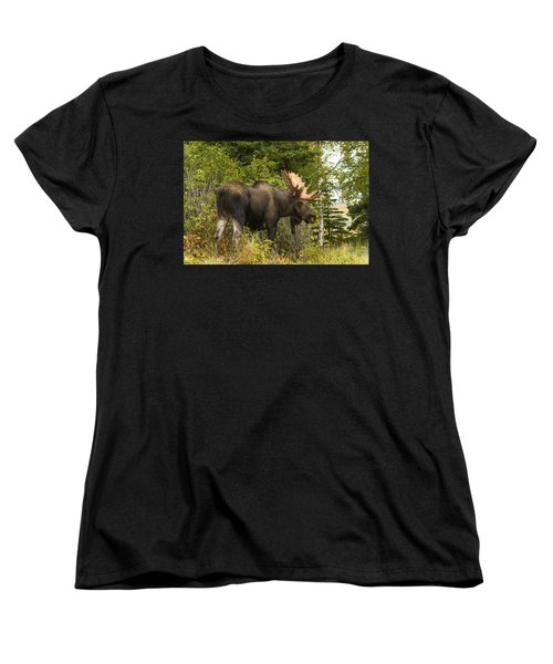 Women's T-Shirt (Standard Cut) featuring the photograph Fall Bull Moose by Doug Lloyd
