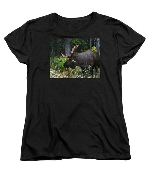 Women's T-Shirt (Standard Cut) featuring the photograph Fall Master by Doug Lloyd